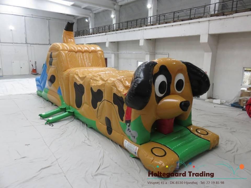 Hund forhindringsbane